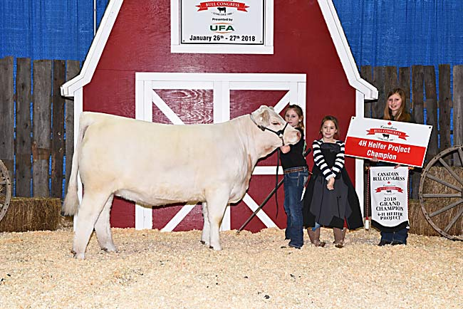 4-H Heifer Project Champion - Indy Fowler 2018