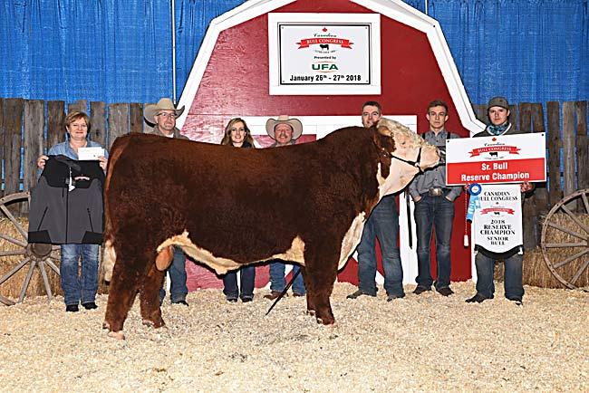 Sr. Bull Reserve - MJT Cattle Co. 2018