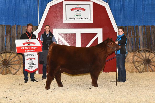 4-H Heifer Project Grand Champion – Lexi Dietrich 2020