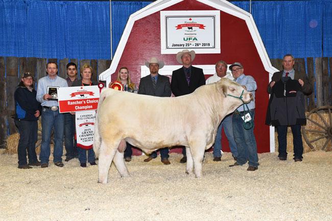 Rancher's Choice Grand Champion – Springside Farms 2020