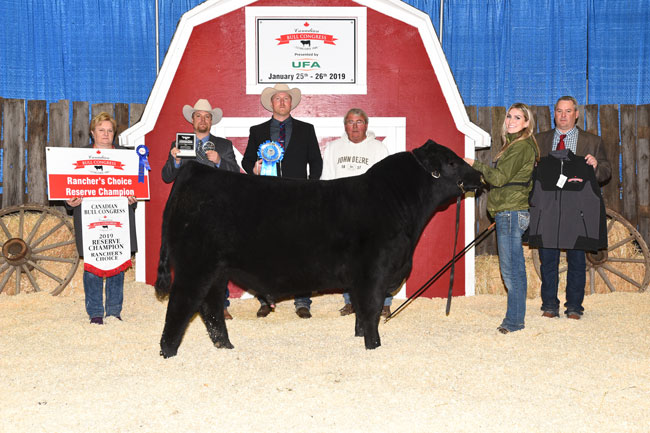 Rancher's Choice Reserve Champion – Miller Wilson Angus 2020