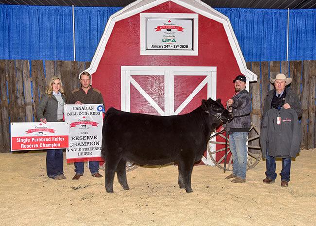 Single Purebred Heifer Reserve Champion 2020