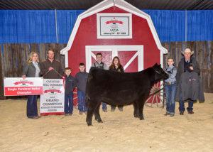 Single Purebred Heifer Grand Champion 2020